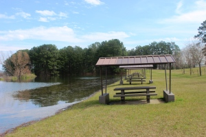 3-17-15 lake 1