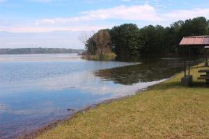 3-17-15 lake 3