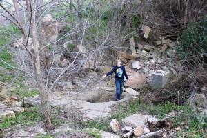 3-7-15 Jasper in castle ruins
