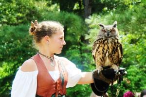 4-26-15 European eagle owl