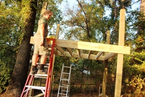 10-16-15 treehouse joists