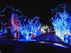 12-28-15 Davis lights 1