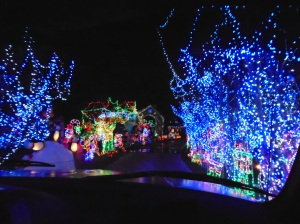 12-28-15 Davis lights 2