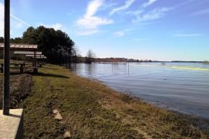 2-11-16 lake