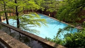 4-24-16 Water garden pool