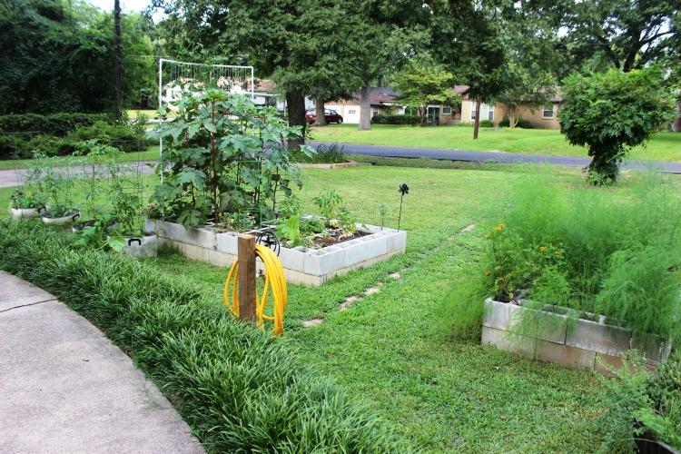 11 garden